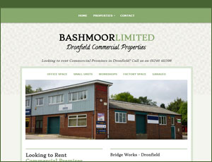 Bashmoor Limited  link and screenshot